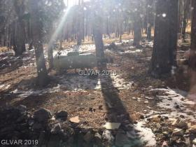 575 Snow Fall Trail
