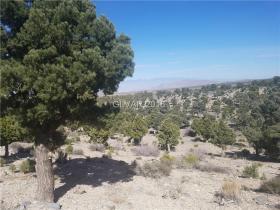 0 Oak Trail Circle